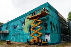fecskefészek fűtőmű mondolo szetáv szeged street art környezetvédelem