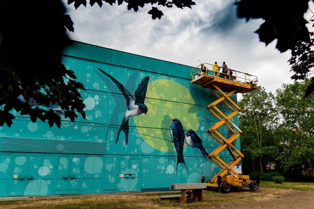 szeged környezetvédelmi street art mondolo egyesület környezetvédelem
