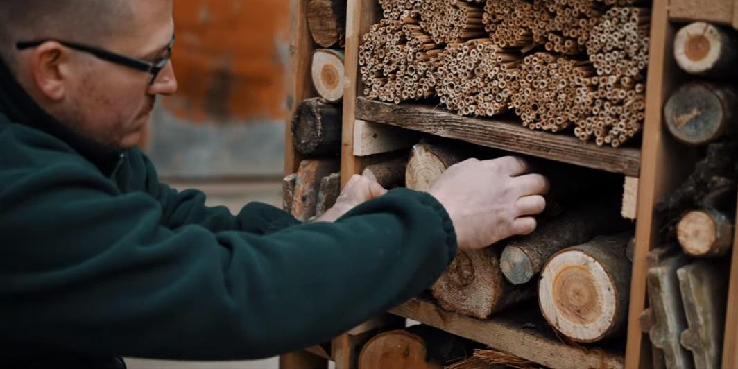 méhecskehotel építése nádszál farönk fúrt üregek urbanology
