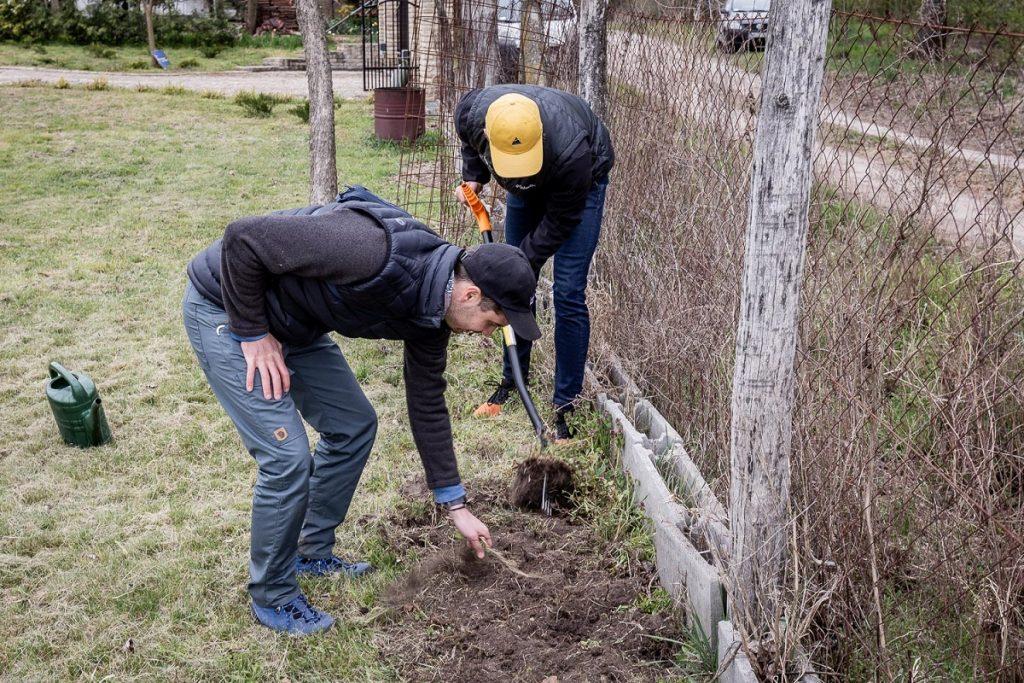 otthoni méhlegelő ásás gereblyézés föld feltörése