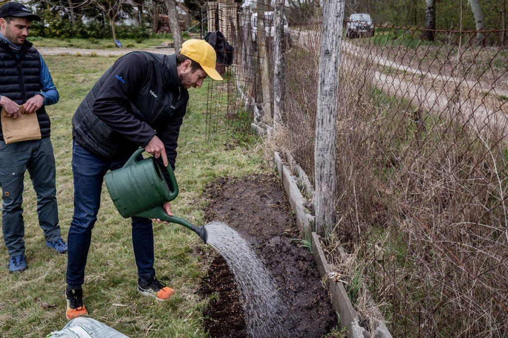 otthoni méhlegelő locsolás magkeverék syngenta magyarország urbanology mondolo egyesület